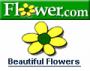 Logo Flower.com