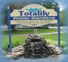 Logo Totalily Water Gardens