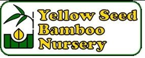 Logo tuincentrum Yellow Seed Bamboo Nursery
