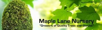 Logo tuincentrum Maple Lane Nursery