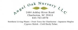 Logo tuincentrum Angel Oak Nursery & Mulch