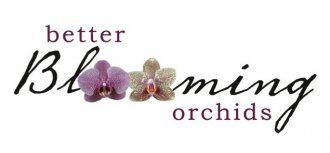 Logo tuincentrum Better Blooming Orchids
