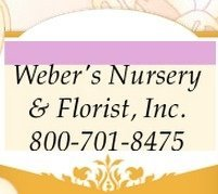 Logo tuincentrum Webers Nursery