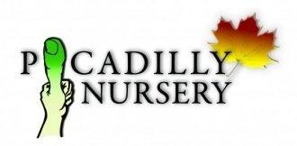 Logo tuincentrum Picadilly Nursery