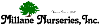 Logo tuincentrum Millane Nurseries
