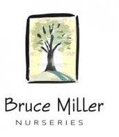 Logo tuincentrum Bruce Miller Nurseries