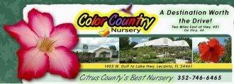 Logo tuincentrum Color Country Nursery