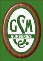 Logo tuincentrum Glen St Mary Nursery