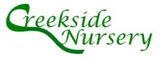 Logo Creekside Nursery Morrison