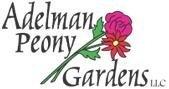 Logo tuincentrum Adelman Peony Gardens