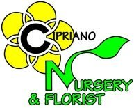 Logo tuincentrum Cipriano Nursery & Garden Center