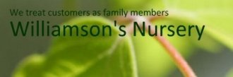 Logo Williamson's Nursery