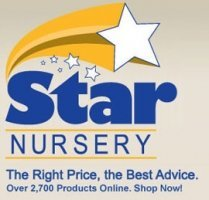 Logo Star Nursery Old Cottonmill Location