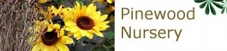 Logo tuincentrum Pinewood Nursery