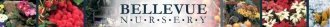 Logo tuincentrum Bellevue Nursery Inc