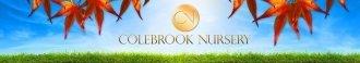Logo tuincentrum Colebrook Nursery