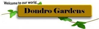 Logo tuincentrum Dondro Garden The Front Yard
