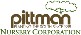 Logo tuincentrum Pittman Nursery Corporation