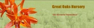 Logo tuincentrum Great Oaks Nursery & Garden