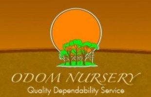 Logo Odom Nursery Co