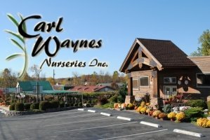 Logo tuincentrum Carl Wayne's Nurseries