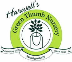 Logo tuincentrum Harwells Green Thumb Nursery H&GS