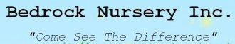 Logo tuincentrum Bedrock Nursery