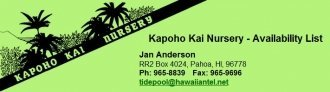 Logo tuincentrum Kapoho Kai Nursery