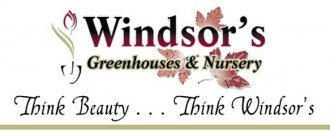 Logo tuincentrum Windsor Greenhouses & Nursery
