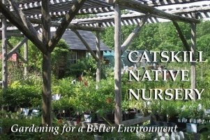 Logo tuincentrum Catskill Native Nursery
