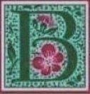 Logo tuincentrum Blooming Colors Nursery Ltd