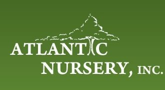 Logo Atlantic Nursery