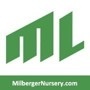 Logo tuincentrum Milberger Nursery-grass Sales