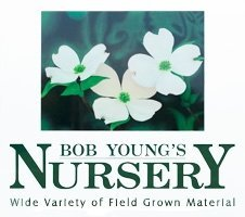 Logo Bob Young Jr Nursery
