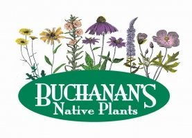 Logo tuincentrum Buchanans Native Plants
