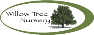 Logo Willow Tree Nursery