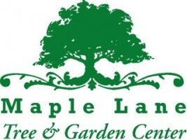 Logo Maple Lane Trees & Garden