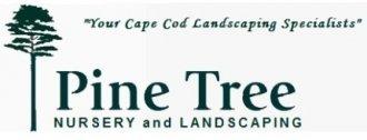 Logo tuincentrum Pine Tree Nursery-landscaping