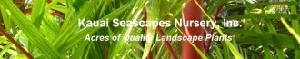Logo tuincentrum Kauai Seascapes Nursery