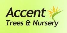 Logo Accent Trees & Nursery