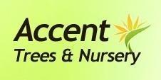 Logo tuincentrum Accent Trees & Nursery