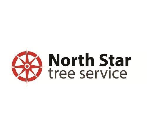 Logo North Star Tree Service Lilburn